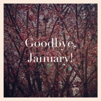 Goodbye-January-2015-2